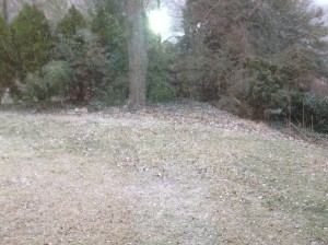 1-snow day 1