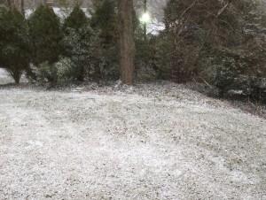 1-snow day 2