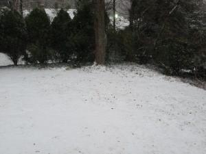 1-snow day 3