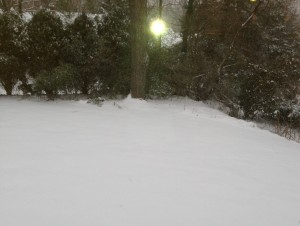 1-snow day 4