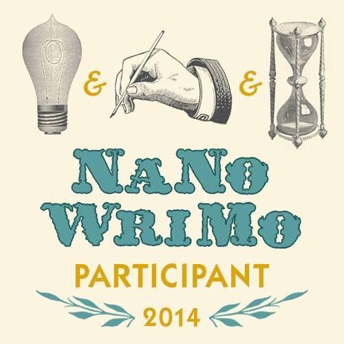 NaNo 2014